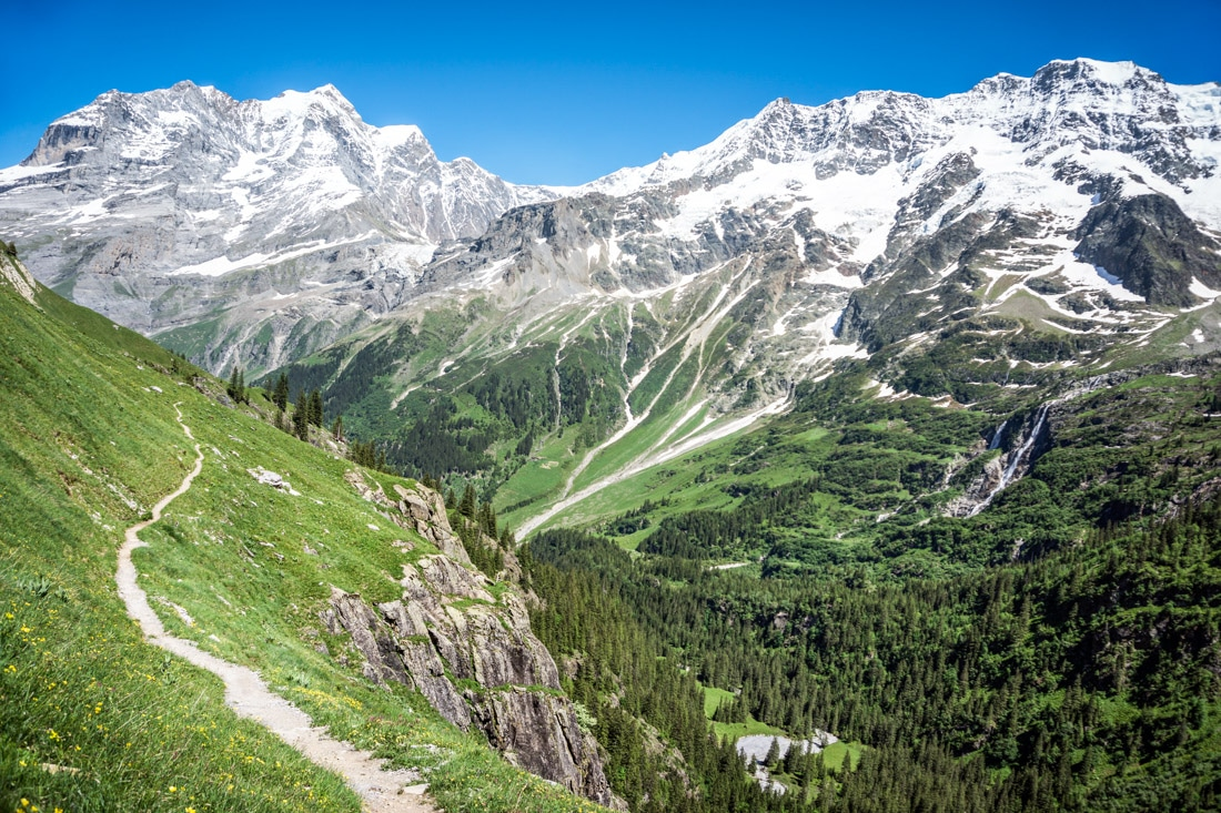 Trail running in the Swiss Alps high above Lauterbrunnen Valley through green grass and wildflowers with the dramatic big mountain views of the Bernese Oberland.